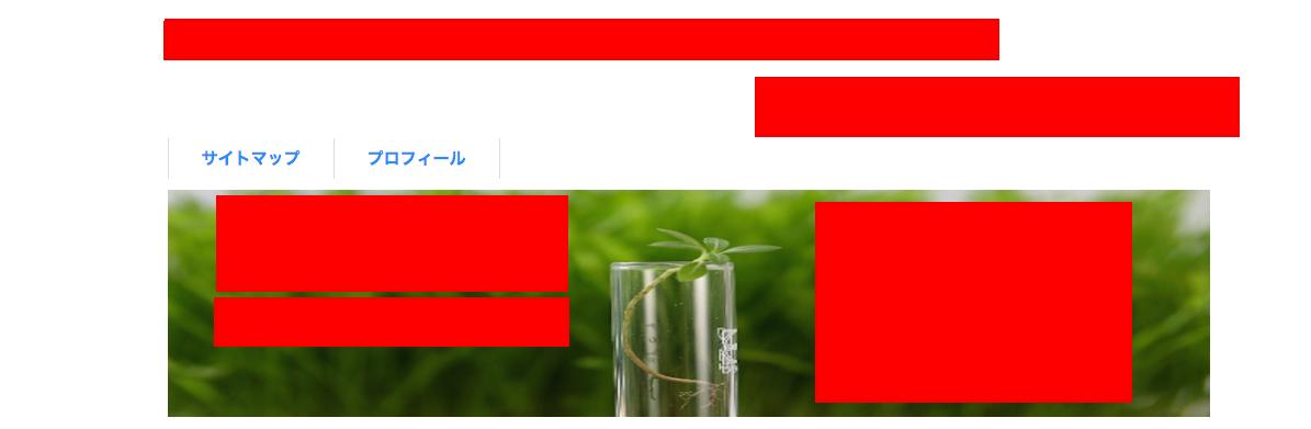 ヘッダーカスタマイズ特化型トレンドブログアフィリエイト