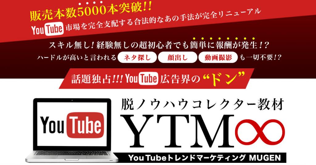 YTM∞(無限)を実践!初心者では稼げないか【レビュー】